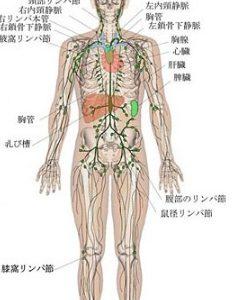 メラノーマ(悪性黒色腫)や乳がんの手術前に行うセンチネルリンパ節シンチの仕組み